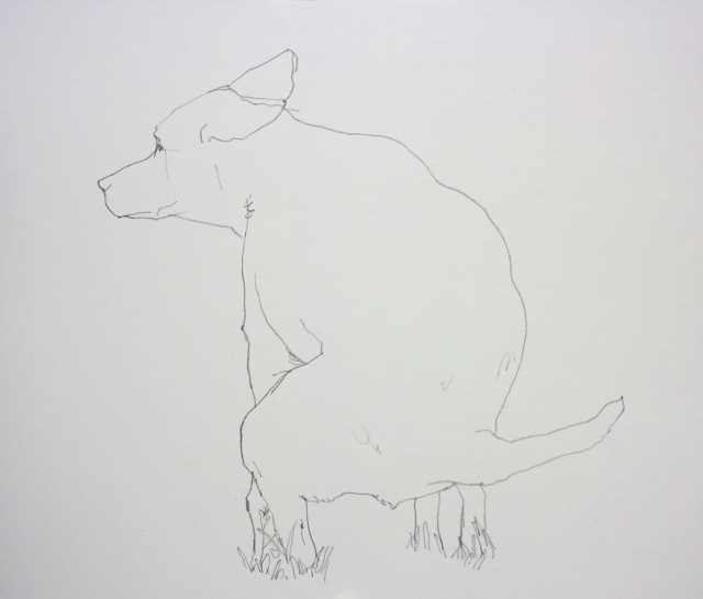 Lien drawing of a heeler pooping